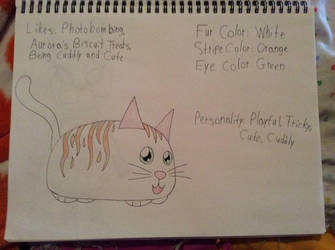 Fluffy The Cat Reference by April-13