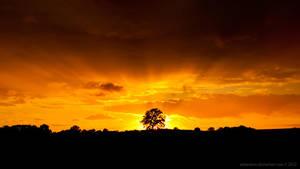 sunset Schleswig-Holstein by antarialus