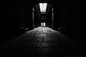 into the light by antarialus