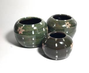 Cactus Set by j03LL359