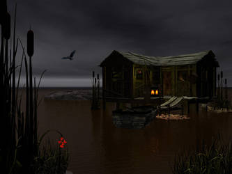 nighttime on the swamp by DarkRiderDLMC