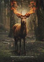 Flaming Deer Spirit by IreneFarakou