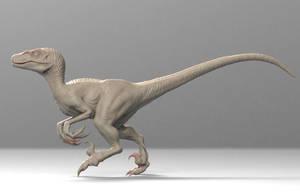 Velociraptor by Heliot8