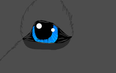 Amazing Eyes  by zoeemy
