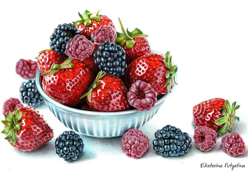 Shining Berries by PutyatinaEkaterina