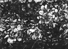 Blooming by OlgaAndreyeva