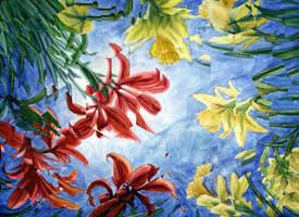 a bugs sky by OlgaAndreyeva