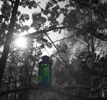 Lantern by Laurenthalas