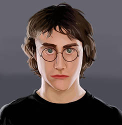 Happy Birthday Harry Potter by picklelova
