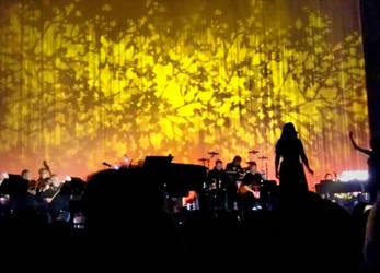 Golden Silhouette by Earth-Vixen