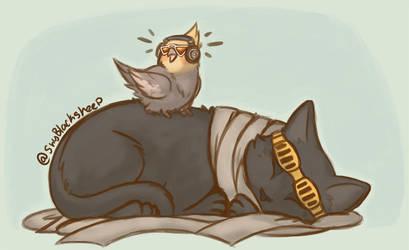 .BnHA: Let him sleep.+ by ShyBlackSheep