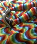 Rainbow Rainbow by LittleVittles