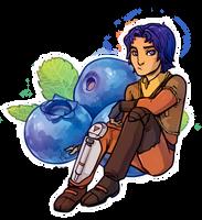 SWR Ezra 'Blueberry' Bridger by lorna-ka