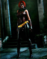 Robin by Le-Arc-7thHeaven