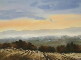 Wheat field by angora39