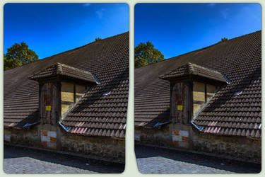 Roof at street level 3-D / CrossView / Stereoscopy by zour