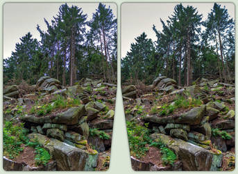 Boulder field 3-D / CrossView / Stereoscopy by zour