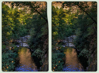 Bode River Flora 3-D / CrossView / Stereoscopy HDR by zour