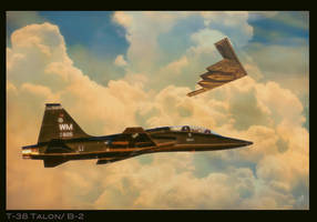 T-38 Talon / B-2 Spirit by Distantstarr