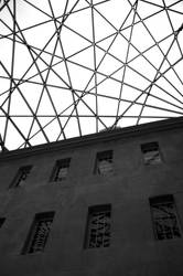 Museum lines by Elssa