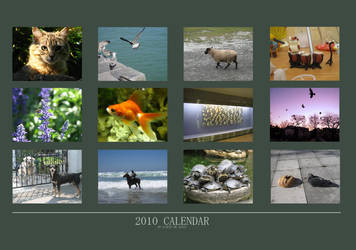 Animal photo calendar by Little-Endian
