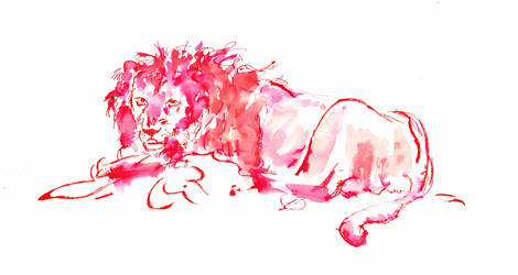 Resting Lion by TheHiddenTalents