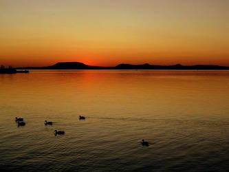 Golden Sunset by nviki89