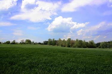 Green Fields by ScottEquus91