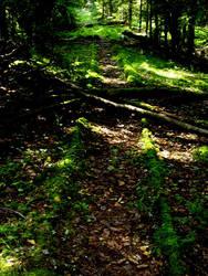 Nargen Castle's forgotten rails by Soobel