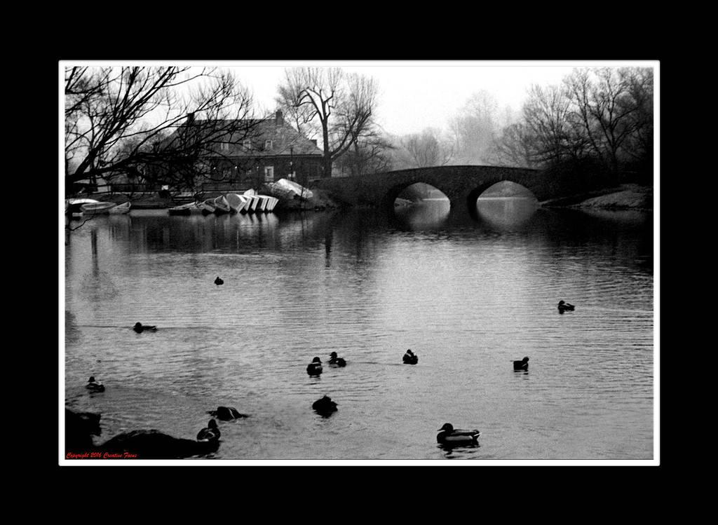 A Winter's Tale by Trippy4U