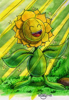 Let the sun shine in Sunflora by WillPetrey
