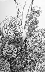 New Years Roses by darthmer-mer