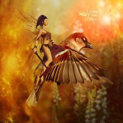 Bird Rider by juliet981