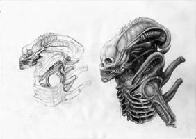 Aliens by dreamwalker001a