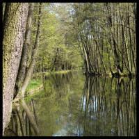 Mirror by l-mysza-l