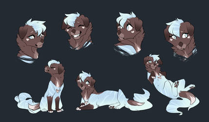 Maybelle [Sketch Page - Commission] by CristalWolf567