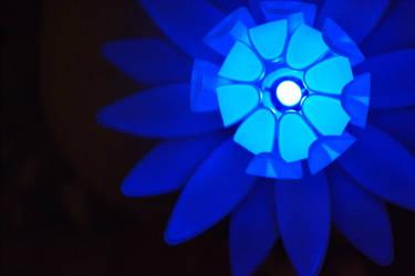 Night flower - Blue II by Quirpie