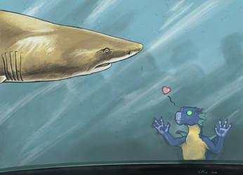 Shark is Love by Luthrai