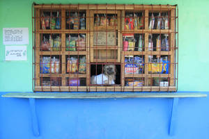 Dog Mans Shop by kruelaid