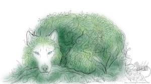 Awaken in the spring by Bear-hybrid