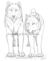the Alphas by Bear-hybrid