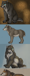 Wolfbear over the years by Bear-hybrid