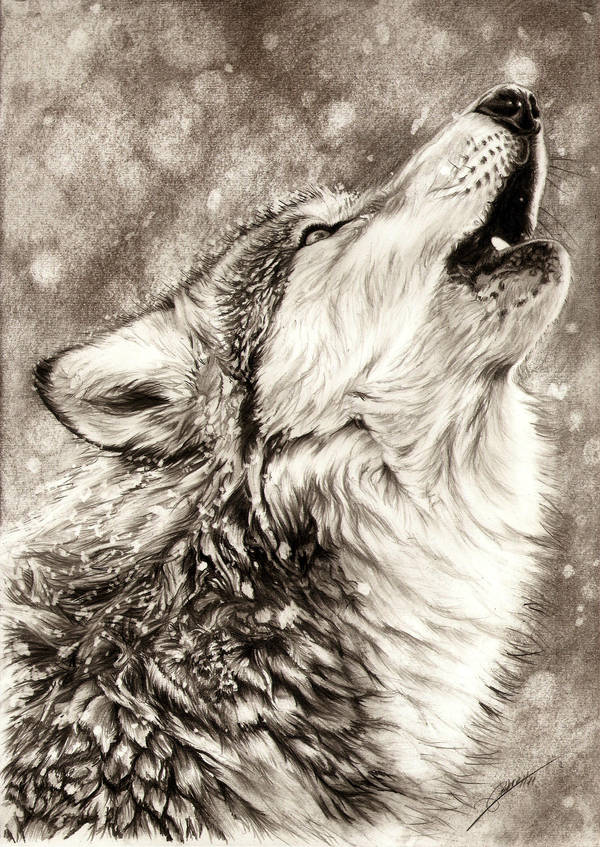 Howling Wolf by AmBr0