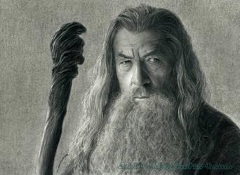 Gandalf the Grey by AmBr0