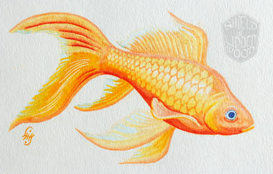 Goldfish in Watercolor by LiHy