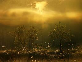 9.6.2012: When Air Was Alive by Suensyan