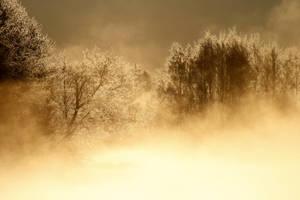 17.3.2014: Cold Spring Morning by Suensyan