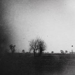 Dawn by Grauenartt