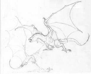 Dragon sketches by Inkthinker