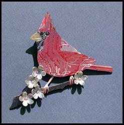 cardinal by thebluekraken
